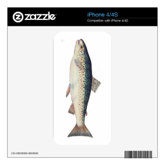 Colorful vintage salmon illustration decals for iPhone 4S