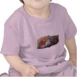 Colorful Vintage Verbenas Infant T-Shirt