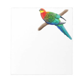 Colorful Western Rosella Parrot Notepad
