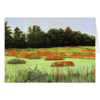 Colorful Wetlands Cards