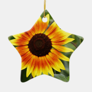 Colorful Wildflower Yellow Indian Blanket Ornament