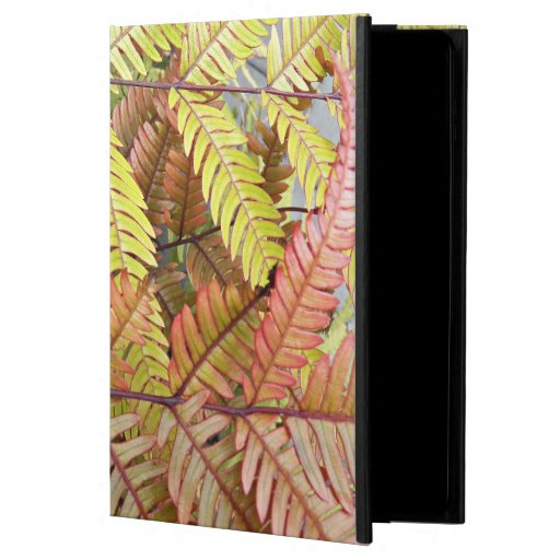 Colorful Woodland Ferns Floral Powis iPad Air 2 Case