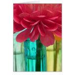 Colorful zinnias & vases II Card