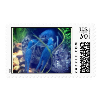 colorfull blue lobster postage