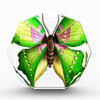 Colorfull Butterfly Awards