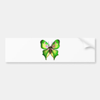 Colorfull Butterfly Bumper Sticker