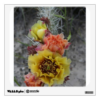 colorfull plains prickle pear flowers in pink and wall skins