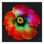 Colorized Hibiscus Print on Canvas