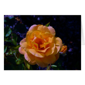 Colorized Rose Greeting Card