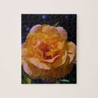 Colorized subió puzzle