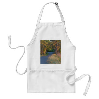 Colors at sunset adult apron