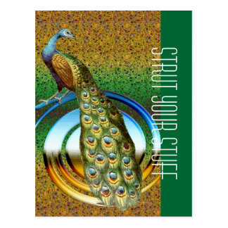 Colors of a Peacock Postcard