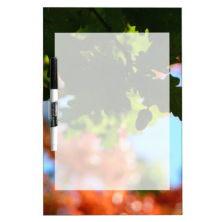Colors of Autumn Dry-Erase Board