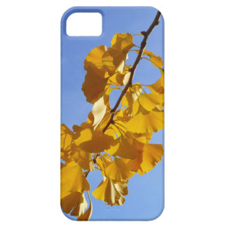 Colors of Autumn Gingko leaves iPhone SE/5/5s Case