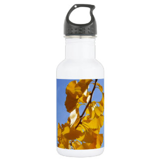 Colors of Autumn Gingko leaves Stainless Steel Water Bottle