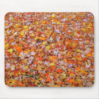 Colors of Autumn Mouse Pad