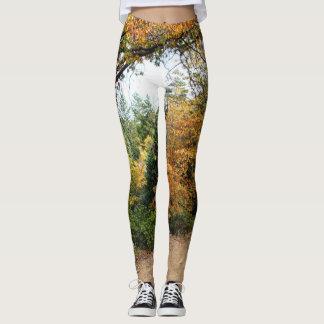 Colors of Autumn Print Leggings