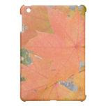 Colors of Autumn Speck Case iPad Mini Cases
