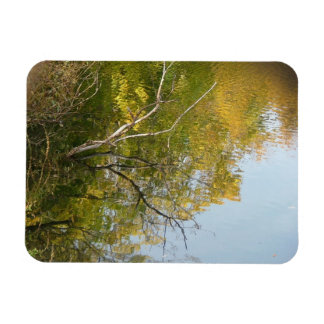 Colors of fall rectangular photo magnet