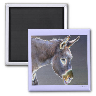 Colors of Light Donkey 2 Inch Square Magnet