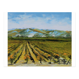 Colors of Napa Valley, Wine Country California Postcard