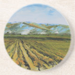 Colors of Napa Valley, Wine Country California Sandstone Coaster