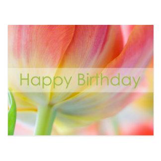 Colors of Spring Birthday Postcard