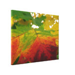 Colors of the Maple Leaf Autumn Nature Photography Canvas Print