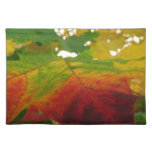 Colors of the Maple Leaf Autumn Nature Photography Cloth Placemat
