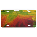 Colors of the Maple Leaf Autumn Nature Photography License Plate