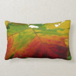 Colors of the Maple Leaf Autumn Nature Photography Lumbar Pillow