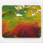 Colors of the Maple Leaf Autumn Nature Photography Mouse Pad