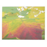 Colors of the Maple Leaf Autumn Nature Photography Notepad
