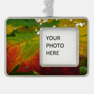 Colors of the Maple Leaf Autumn Nature Photography Ornament