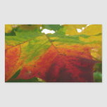 Colors of the Maple Leaf Autumn Nature Photography Rectangular Sticker