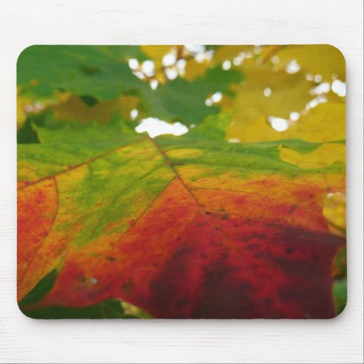 Colors of the Maple Leaf Mousepad
