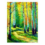 Colors of the Season Postcard