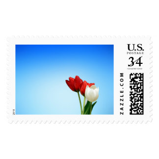 Colors source of happiness postage