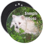 COLOSSAL 6 inch Pet Photo Button Pin