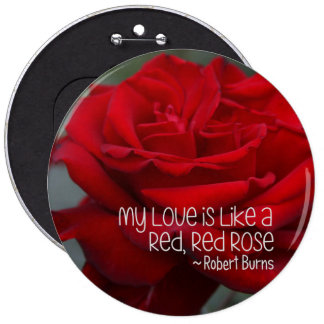 Colossal, 6 Inch Round Button My Love Red Rose