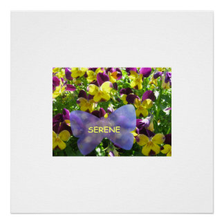 Colossal Pansy Poster