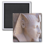 Colossal statue of Ramesses II at Memphis, Egypt Magnets