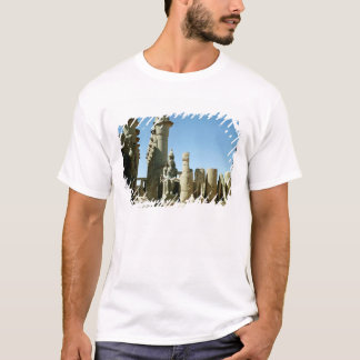Colosses Ramesses II  and  Pylon of Amenophis T-Shirt