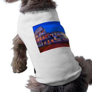 Colosseum Roma Camisas De Perritos