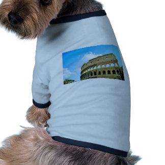 Colosseum Camisetas Mascota