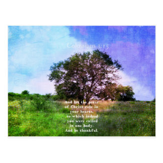 Colossians 3:15 Inspirational Bible Verse Postcard
