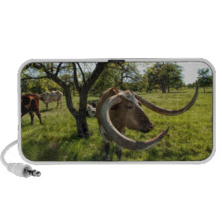 Colossol Texas Longhorn Cattle Mp3 Speakers