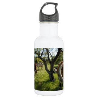 Colossol Texas Longhorn Cattle Stainless Steel Water Bottle