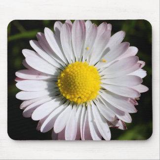 Colour Daisy Mouse Pad