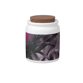 colour flower with black and white candy jar
